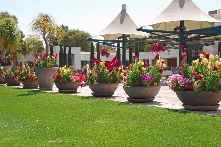 Shell Vacations Club Has Resorts On Both Coasts To Enjoy - Shellvacationsclub