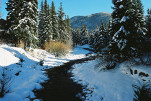 Celebrate The Beauty Of The Winter In Vail Colorado Vacation Club Loans